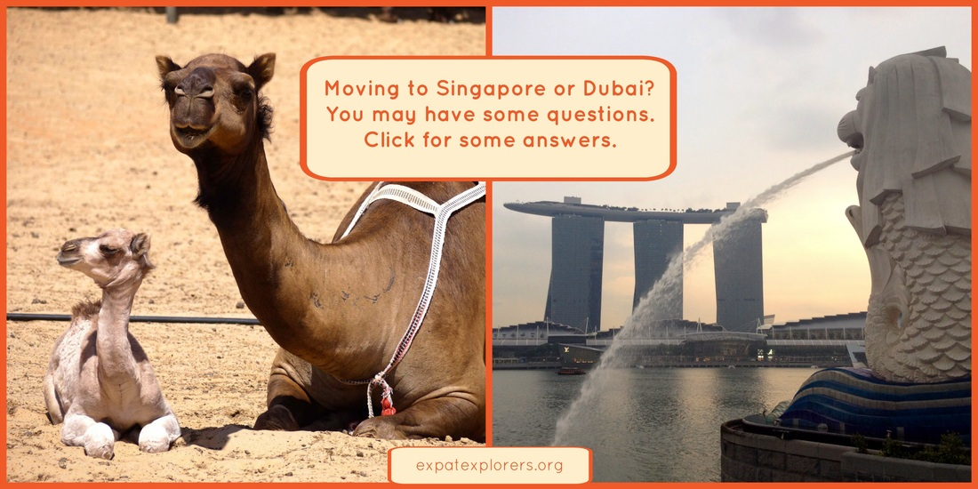 Expat advice for moving to Singapore or Dubai